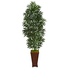 5.5' Bamboo Palm Artificial Plant in Decorative Planter