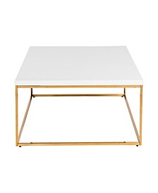 Teresa Square Coffee Table with Brushed Stainless Steel Frame