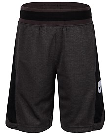Nike Toddler Boys Hoopfly Shorts