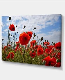 "Designart Bright Red Poppy Flowers Photo Flower Artwork On Canvas - 32"" X 16"""