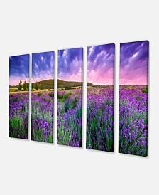 "Designart Summer Lavender Field In Tihany Modern Landscape Wall Art Canvas - 60"" X 28"" - 5 Panels"