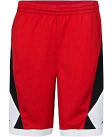 Jordan Big Boys Triangle Shorts