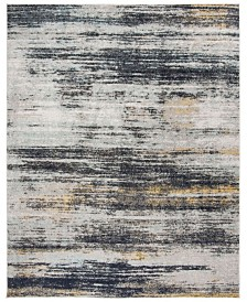 Safavieh Adirondack Light Gray and Black 8' x 10' Area Rug