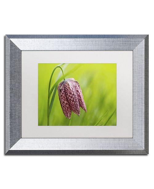 "Trademark Global Cora Niele 'Snake's Head Fritillary Flower' Matted Framed Art - 14"" x 11"" x 0.5"""