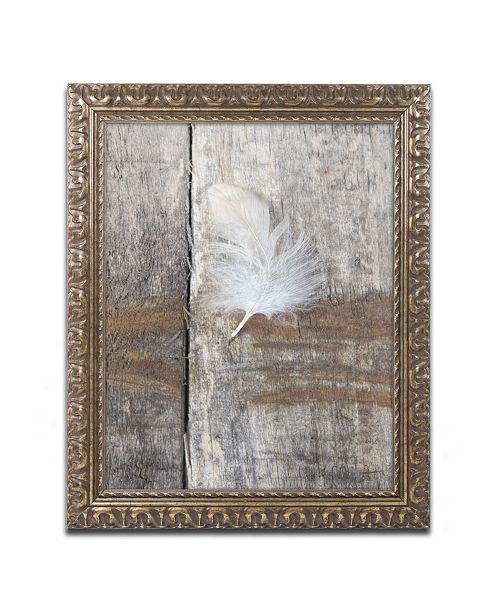 "Trademark Global Cora Niele 'Feather on Wood I' Ornate Framed Art - 14"" x 11"" x 0.5"""