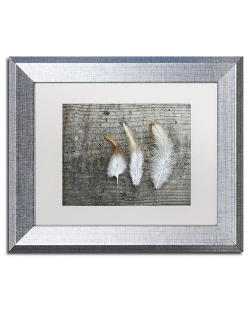 """Trademark Global Cora Niele 'Three Feathers on Wood' Matted Framed Art - 14"""" x 11"""" x 0.5"""""""