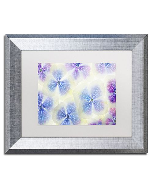 """Trademark Global Cora Niele 'Blue and White Hydrangea Flowers' Matted Framed Art - 14"""" x 11"""" x 0.5"""""""