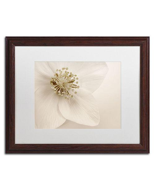 "Trademark Global Cora Niele 'Hellebore Christmas Rose' Matted Framed Art - 20"" x 16"" x 0.5"""