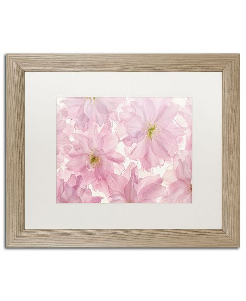 "Trademark Global Cora Niele 'Pink Cherry Blossom' Matted Framed Art - 20"" x 16"" x 0.5"""