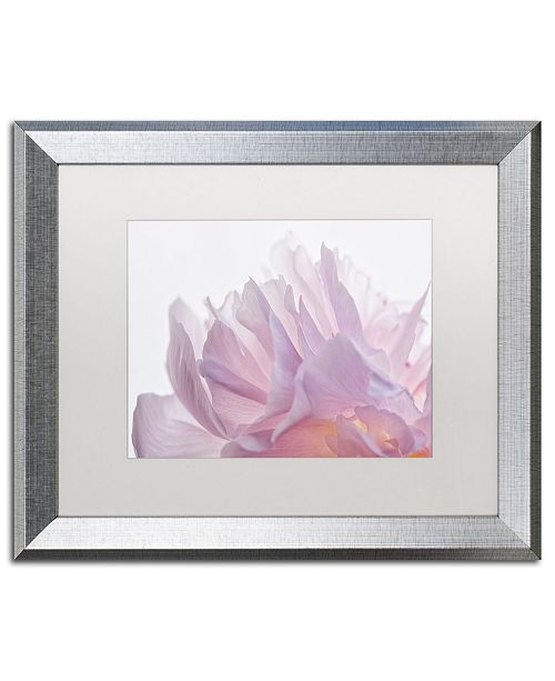 "Trademark Global Cora Niele 'Pink Peony Petals VI' Matted Framed Art - 20"" x 16"" x 0.5"""