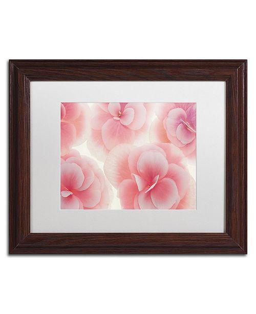 "Trademark Global Cora Niele 'Rose Begonia Flowers' Matted Framed Art - 14"" x 11"" x 0.5"""