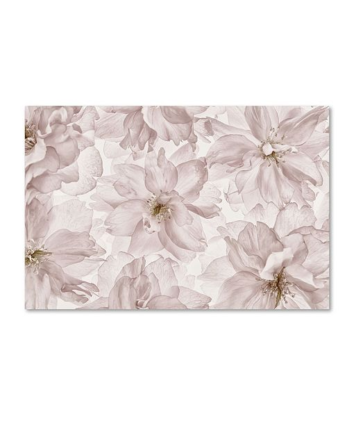 "Trademark Global Cora Niele 'Translucent Cherry Blossom' Canvas Art - 19"" x 12"" x 2"""