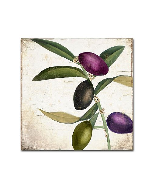 "Trademark Global Color Bakery 'Olive Branch II' Canvas Art - 18"" x 2"" x 18"""