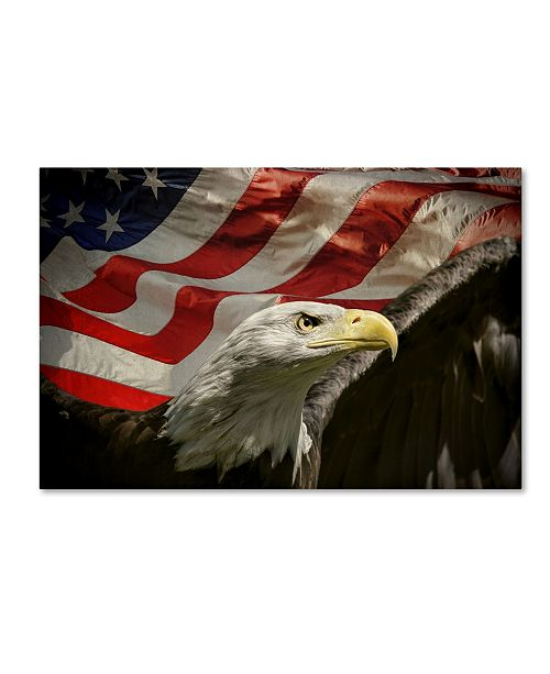 "Trademark Global Jai Johnson 'American Eagle' Canvas Art - 19"" x 12"" x 2"""