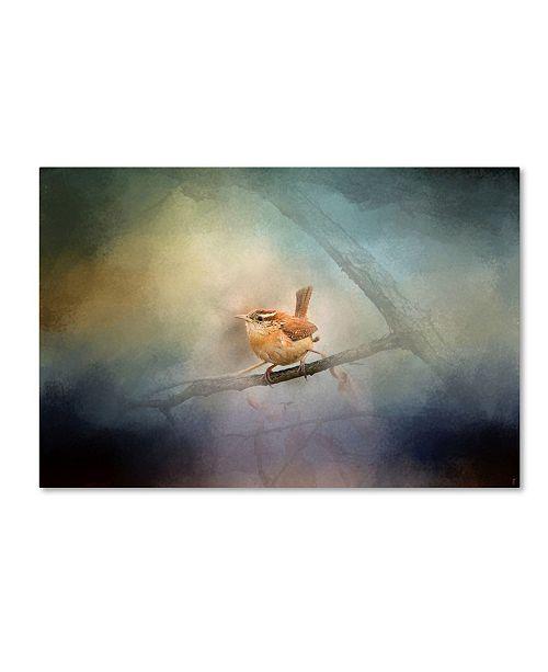 "Trademark Global Jai Johnson 'Brighten My World Wren' Canvas Art - 24"" x 16"" x 2"""