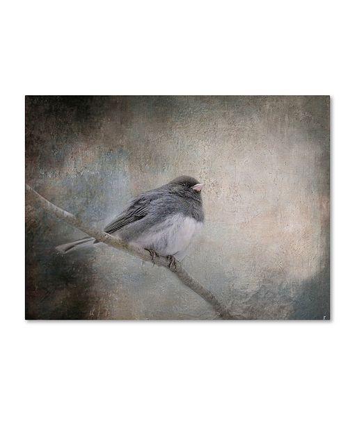 "Trademark Global Jai Johnson 'By Winter's Light' Canvas Art - 47"" x 35"" x 2"""