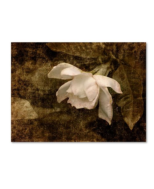 "Trademark Global Jai Johnson 'Cape Jasmine Gardenia 2' Canvas Art - 19"" x 14"" x 2"""