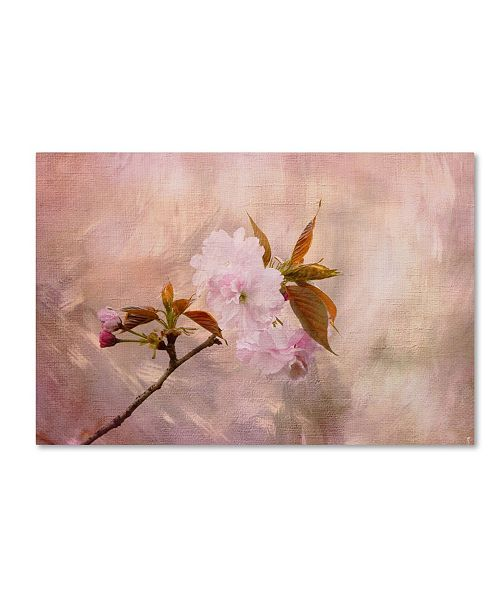 "Trademark Global Jai Johnson 'Cherry Blossom' Canvas Art - 32"" x 22"" x 2"""