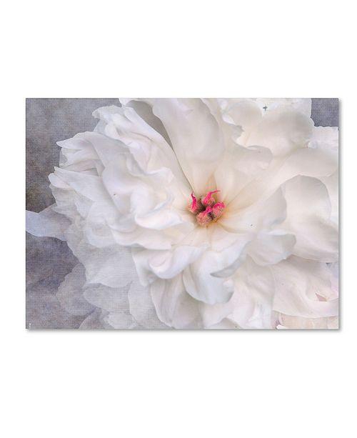 "Trademark Global Jai Johnson 'Pure' Canvas Art - 32"" x 24"" x 2"""