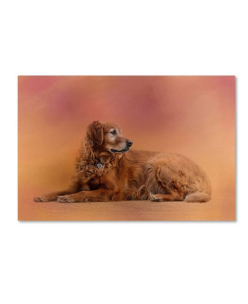 "Trademark Global Jai Johnson 'Golden Retriever In The Setting Sun' Canvas Art - 24"" x 16"" x 2"""