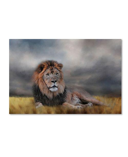 "Trademark Global Jai Johnson 'Lion Waiting For The Storm' Canvas Art - 19"" x 12"" x 2"""
