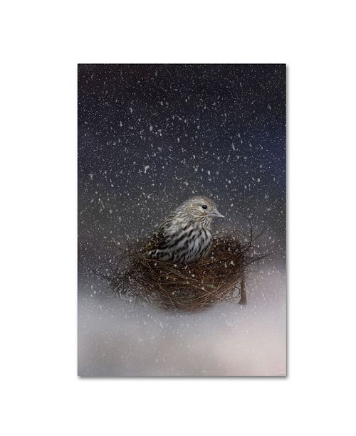"Trademark Global Jai Johnson 'Keeping Warm In My Nest' Canvas Art - 32"" x 22"" x 2"""