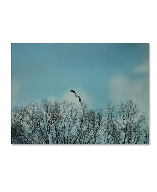 "Trademark Global Jai Johnson 'Over The Treeline' Canvas Art - 47"" x 35"" x 2"""
