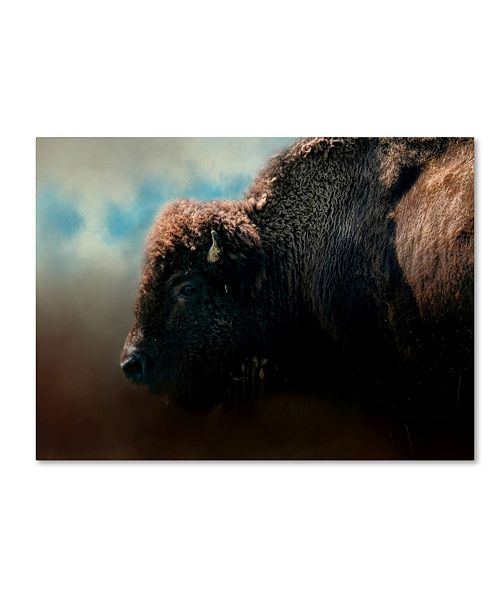 "Trademark Global Jai Johnson 'American Bison After The Storm' Canvas Art - 32"" x 24"" x 2"""