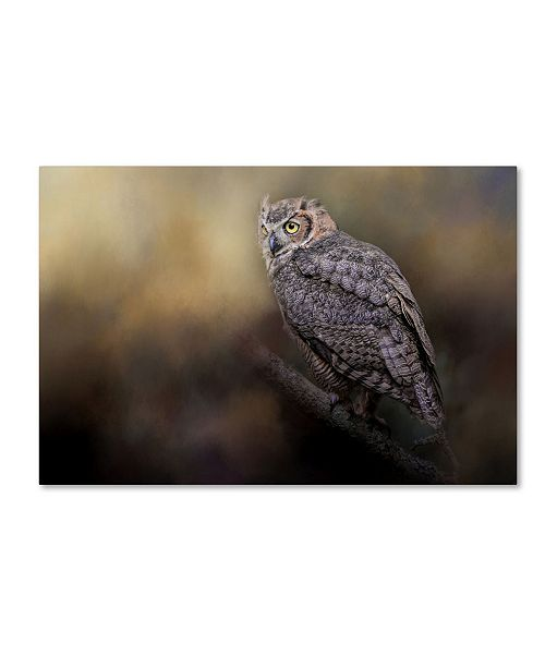 """Trademark Global Jai Johnson 'A Night With The Great Horned Owl 2' Canvas Art - 47"""" x 30"""" x 2"""""""