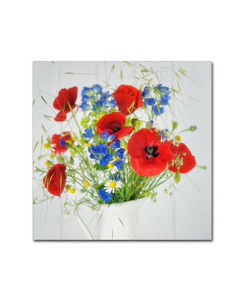 "Trademark Global Cora Niele 'Wildflower Bouquet' Canvas Art - 35"" x 35"" x 2"""
