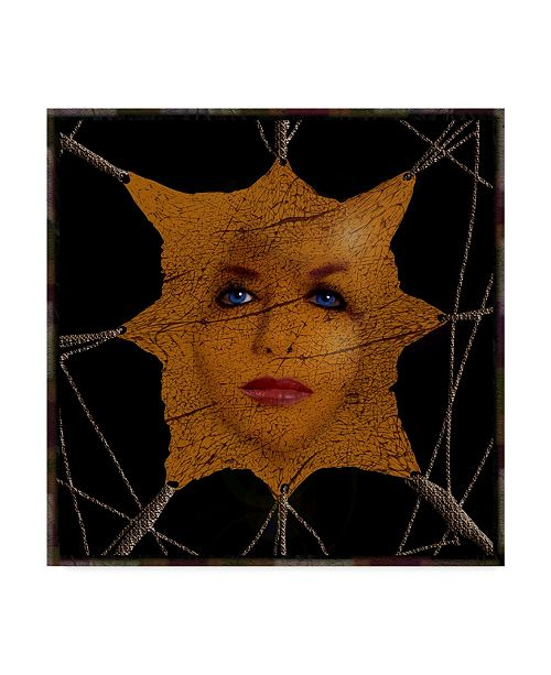 "Trademark Global Dana Brett Munach 'Vanity' Canvas Art - 14"" x 14"" x 2"""