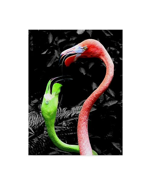 "Trademark Global Dana Brett Munach 'Flamingos Pink and Green' Canvas Art - 24"" x 18"" x 2"""