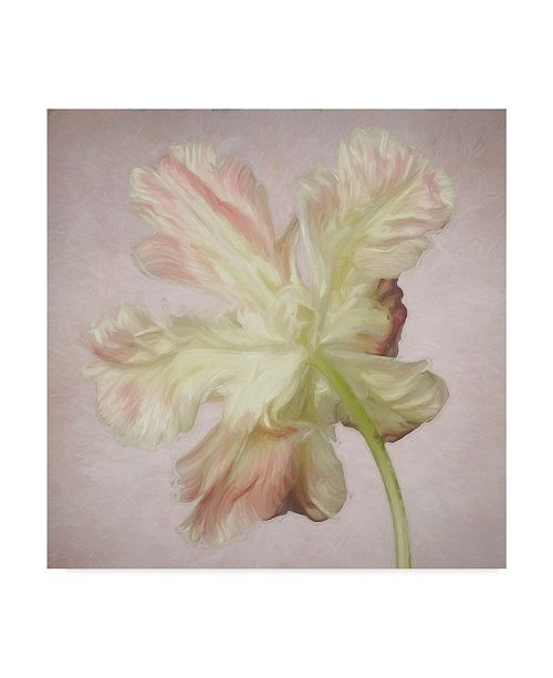 "Trademark Global Cora Niele 'Pink Parrot Tulip Painting Ii' Canvas Art - 14"" x 14"" x 2"""