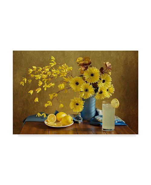 "Trademark Global Darlene Hewson 'Summers Quench' Canvas Art - 19"" x 2"" x 12"""