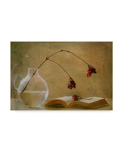 "Trademark Global Delphine Devos 'A Book' Canvas Art - 32"" x 2"" x 22"""