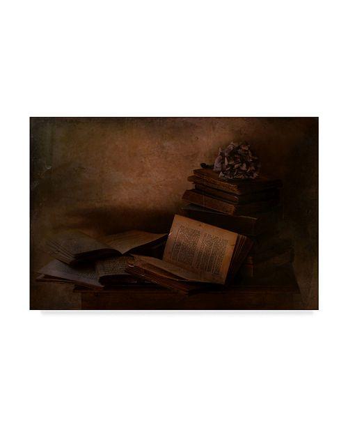 "Trademark Global Delphine Devos 'Old Books' Canvas Art - 24"" x 2"" x 16"""