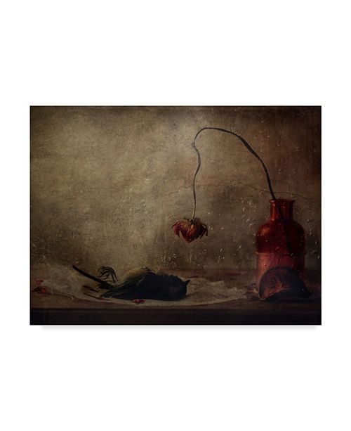 "Trademark Global Delphine Devos 'Ad Vitam' Canvas Art - 32"" x 2"" x 24"""