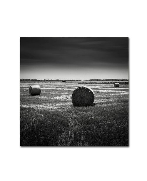 "Trademark Global Dave MacVicar 'Rural' Canvas Art - 14"" x 14"" x 2"""