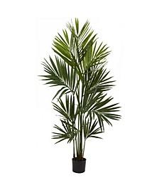 7' Kentia Palm Silk Tree