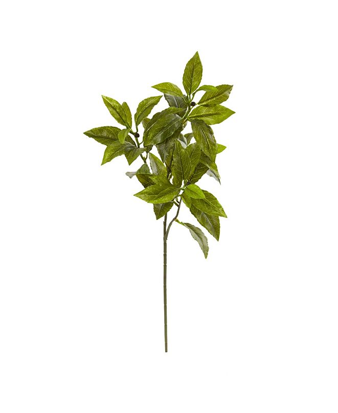 """Nearly Natural 26"""" Coffee Leaf Artificial Plant (Set of 12) (Real Touch)"""