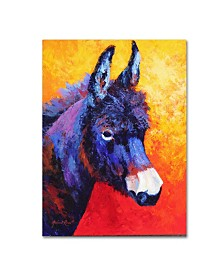 "Marion Rose 'Donkey IVX' Canvas Art - 47"" x 35"" x 2"""