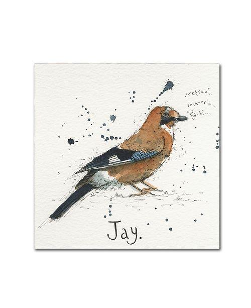 "Trademark Global Michelle Campbell 'Jay' Canvas Art - 24"" x 24"" x 2"""