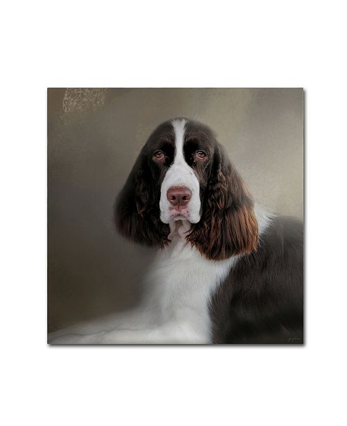 "Trademark Global Jai Johnson 'Waiting Patiently English Springer Spaniel' Canvas Art - 14"" x 14"" x 2"""