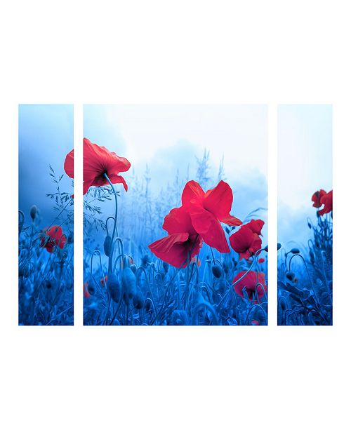 "Trademark Global Philippe Sainte-Laudy 'Jam for Poppies' Multi Panel Art Set Small - 24"" x 32"" x 2"""