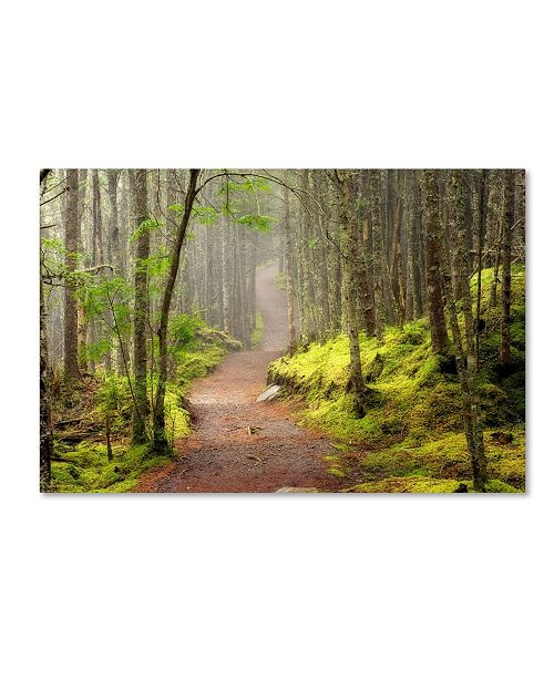 "Trademark Global Mike Jones Photo 'Lubec Path' Canvas Art - 19"" x 12"" x 2"""