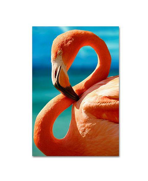 "Trademark Global Mike Jones Photo 'Flamingo S' Canvas Art - 24"" x 16"" x 2"""