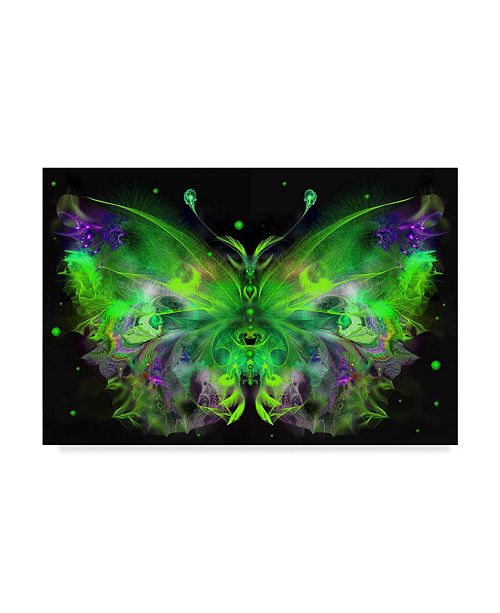 "Trademark Global RUNA 'Butterfly 5' Canvas Art - 32"" x 22"" x 2"""
