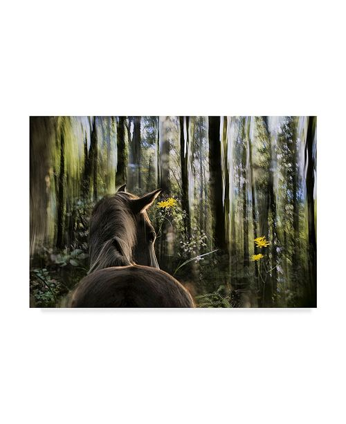 "Trademark Global Milan Malovrh 'Sound Are Forest' Canvas Art - 24"" x 2"" x 16"""