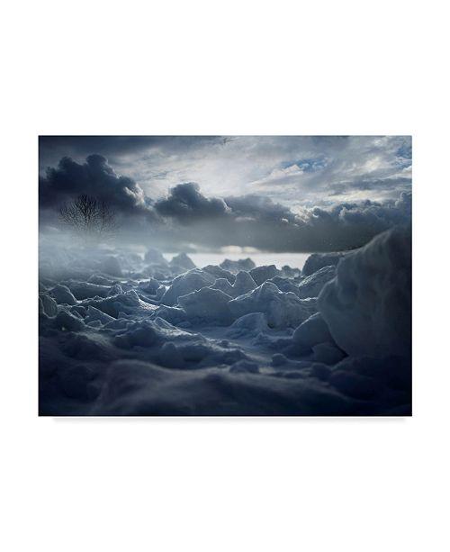 "Trademark Global Nicolas Schumacher 'The Snowstorm' Canvas Art - 32"" x 2"" x 24"""