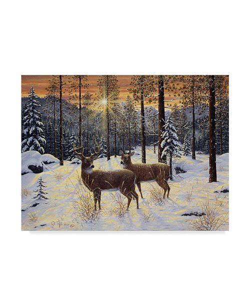 """Trademark Global Jeff Tift 'Evening Silence' Canvas Art - 24"""" x 18"""" x 2"""""""